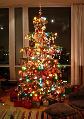 Noble Christmas Trees